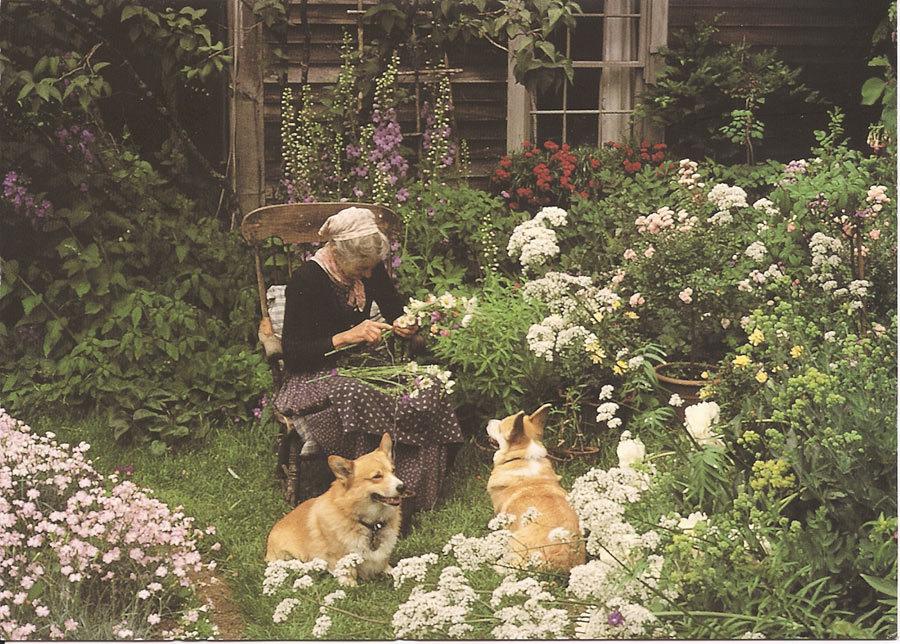Ngôi nhà đầy hoa cỏ và cách sống hoài cổ hiếm có của cụ bà 92 tuổi