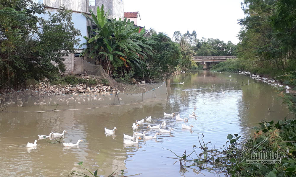 lấn sông, Nghệ An