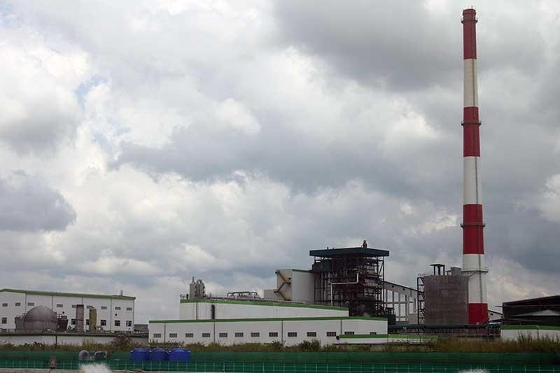 Nhà máy giấy, Ô nhiễm môi trường, Lee&man, Hậu Giang