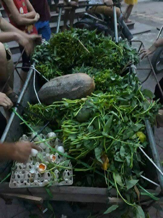 vệ sinh an toàn thực phẩm, ăn bán trú, Vĩnh Phúc