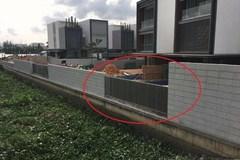 Sở Xây dựng bác đơn HoREA xin 'tha' Thảo Điền Saphire