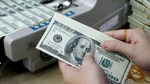 Tỷ giá ngoại tệ ngày 15/9: USD giữ giá ổn định
