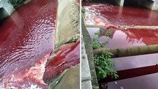 Dòng sông bất ngờ nhuộm đỏ máu tại thành phố Trung Quốc