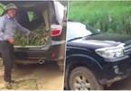 Nông dân Sơn La mang ô tô tiền tỷ đi chở cỏ cho bò