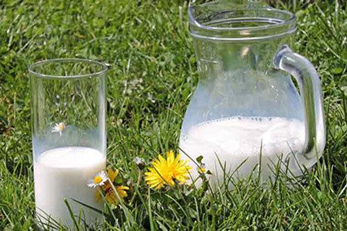 Mẹo tận dụng sữa hết hạn làm những điều không ngờ