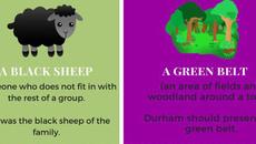 8 từ lóng thú vị trong tiếng Anh