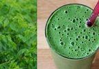 Các món ăn từ rau ngót giúp giảm cân thành công
