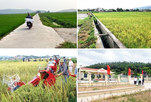 Hà Nội đầu tư 7.400 tỷ đồng xây dựng nông thôn mới