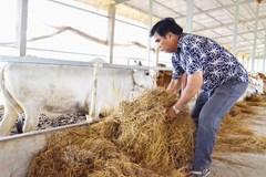 Bí quyết của anh nông dân lãi gần 15 tỷ/năm
