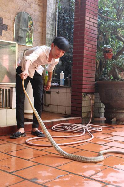 Mục sở thị 'báu vật' của con phố có nhiều đại gia nhất nhì Hà Nội