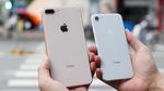 iPhone 8/8 Plus đầu tiên về VN giá khởi điểm 20 triệu đồng