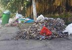 Nín thở qua những đống rác hôi thối giăng khắp Sơn Tây