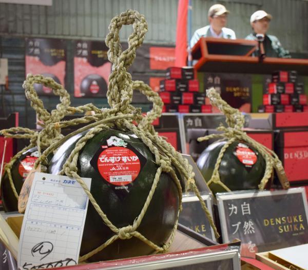 Thị trấn trồng dưa hấu đen giá cả trăm triệu đồng/quả