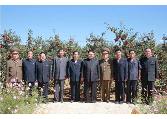 Kim Jong Un tươi cười thăm vườn táo chín mọng