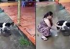 Lời trần tình của người phụ nữ chặt chân chó