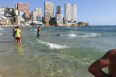 Cá mập bơi sát bờ, du khách bỏ chạy tán loạn