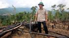 Đề nghị khởi tố vụ phá rừng phòng hộ ở Tiên Phước