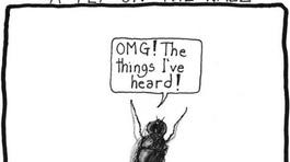 """""""A fly on the wall"""" có phải là """"một con ruồi trên tường""""?"""