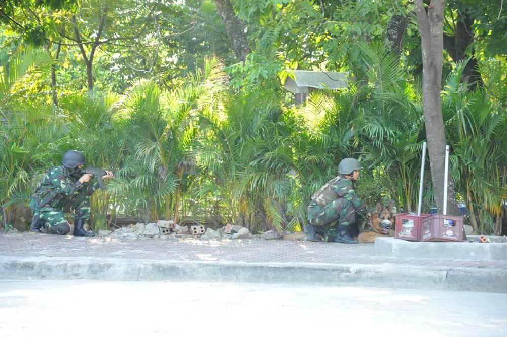 Việt-Trung diễn tập liên hợp chống tội phạm xuyên biên giới