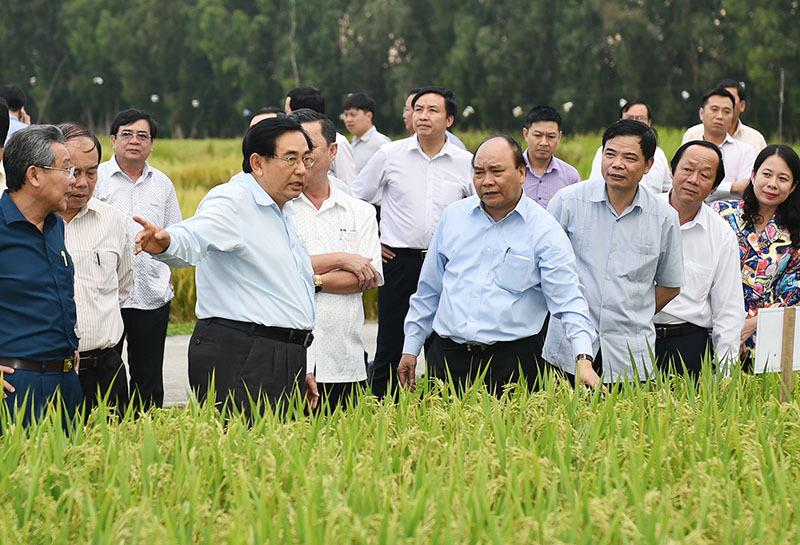Thủ tướng Nguyễn Xuân Phúc, Nguyễn Xuân Phúc, biến đổi khí hậu, nước biển dâng, đồng bằng sông Cửu Long
