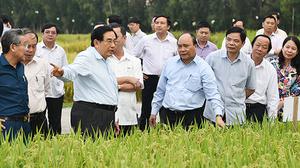 Thủ tướng và chuyện tìm giải pháp bền vững phát triển ĐBSCL