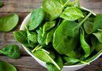 Thực đơn giảm cân với rau chân vịt không phải ai cũng biết
