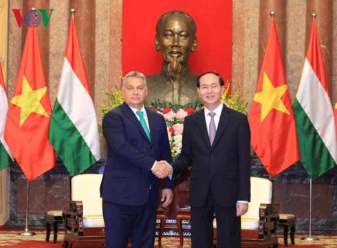 VN luôn coi trọng quan hệ hữu nghị truyền thống với Hungary
