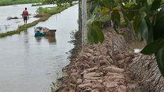 Giải bài toán khó cho Đồng bằng sông Cửu Long