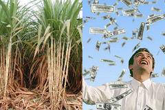 Novaland ra tay, 'ông lớn' Sài Gòn lãi đậm 550 tỷ