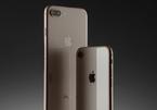 iPhone 8 Plus phát nổ