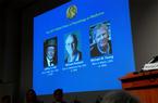 Ba nhà khoa học Mỹ nhận giải Nobel Y học 2017