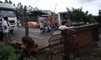 Xe tải tông xe chở đội lân, 8 cháu nhỏ thoát chết