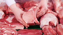 Vì sao thương lái bất chấp độc hại, tiêm thuốc an thần cho lợn?