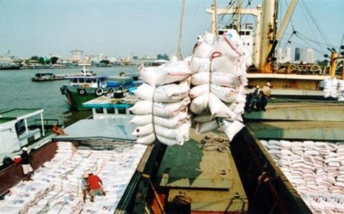 Gạo Việt đến thời 'phất lên' nhờ vào Trung Quốc