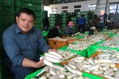 Khu vườn 360 tỷ đồng của 'đại gia' củ cải Lâm Đồng