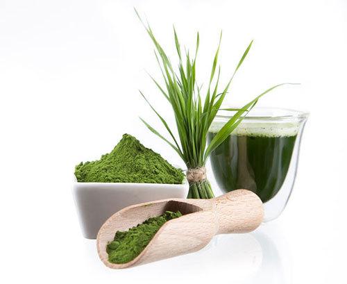Dinh dưỡng tự nhiên giúp tăng cân an toàn