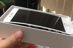 Apple chính thức điều tra pin iPhone 8 Plus bị phồng
