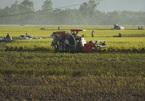 Bắt các đối tượng uy hiếp, thu tiền bảo kê chủ máy gặt lúa
