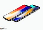 iPhone X chưa lên kệ, Apple đã chuẩn bị sản xuất iPhone X Plus?