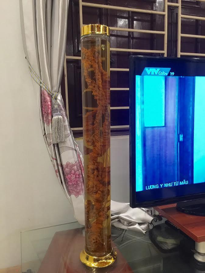 Tam thất cổ dài 1 mét, đại gia Đài Loan xuống 200 triệu mua ngay
