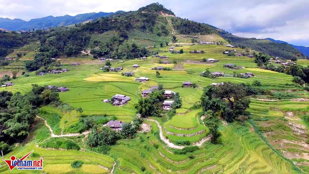 mùa lúa chín, ruộng bậc thang, Hà Giang, Hoàng Su Phì