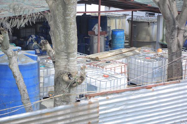 rò rỉ khí NH3, khí amoniac, ngộ độc, Bình Chánh, Sài Gòn