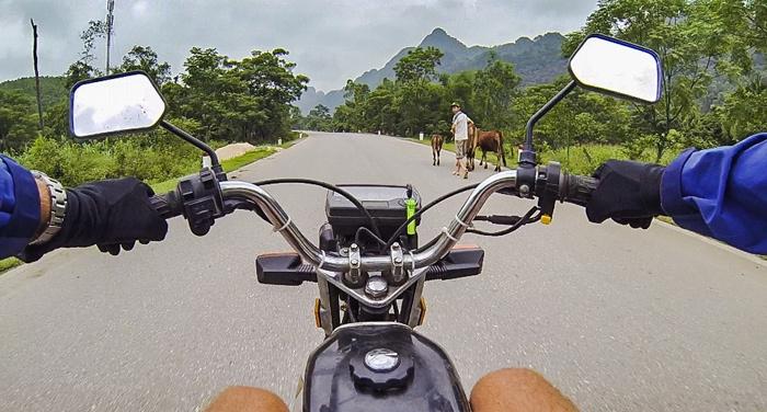 Khách Tây rỉ tai nhau mẹo 'sống sót' khi đi xe máy ở Việt Nam