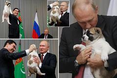 Tổng thống Putin được tặng thêm cún cưng