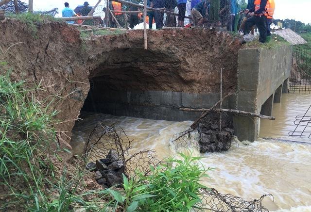 Lao máy xúc xuống sông cản dòng chảy, cứu đê sắp vỡ