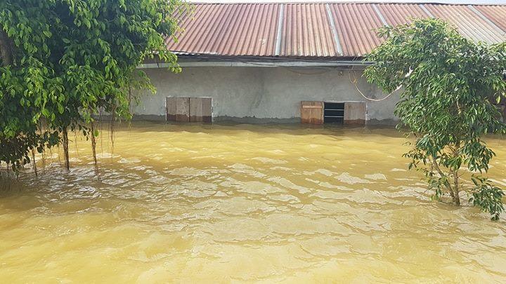 vỡ đê,Hà Nội vỡ đê,mưa lũ lịch sử,mưa lũ,lũ lụt,ngập lụt