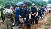 Chó nghiệp vụ bới đống đổ nát tìm thi thể người mất tích