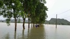 Dùng cano đưa cơm cho 700 phạm nhân bị cô lập do lũ