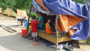 Sơ tán lên đê, dựng lều ở tạm nơi rốn lũ