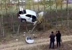 Tài xế mất lái, ô tô 'bay' lên giữa hai ngọn cây